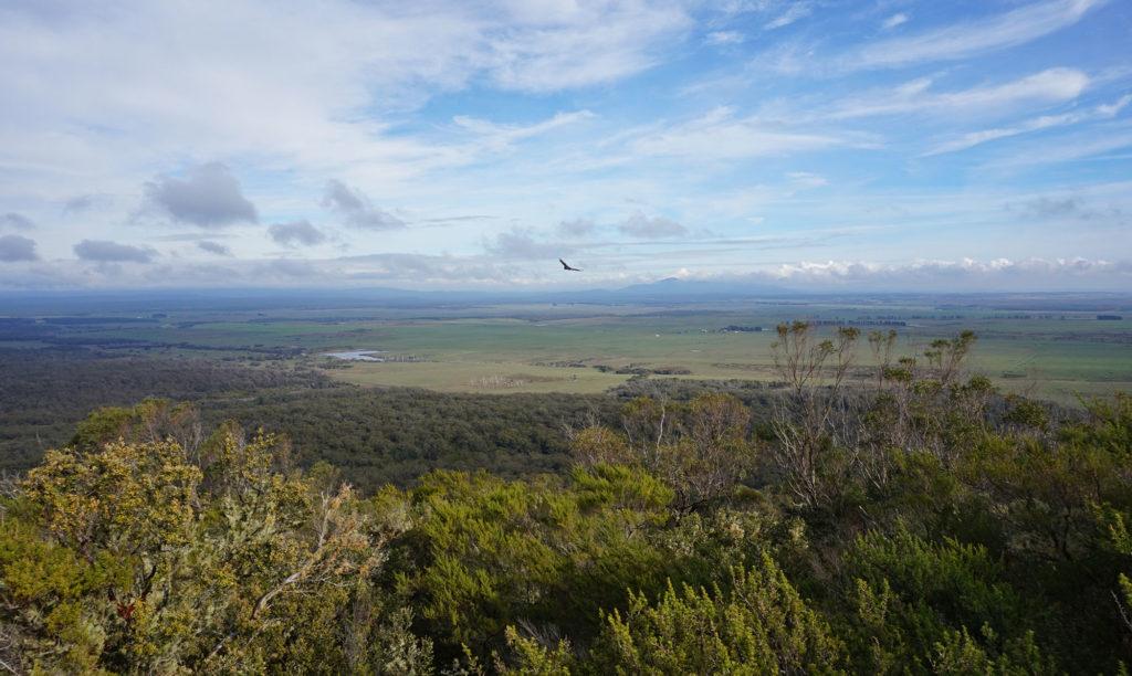 Tasmania i-Drive